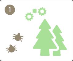花粉やダニなどからアレルギーの原因となる物質(アレルゲン)が出て、体内に侵入します。