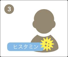 体内に花粉やダニなどのアレルゲンが再び侵入すると、アレルゲンを体の外に出すために、化学物質(ヒスタミン)が分泌されます。